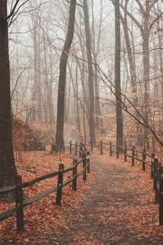 Late autumn hike