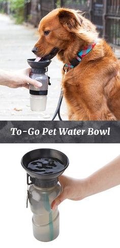 Designed just for dogs this water bottle keeps your canine companion well hydrated on the go. With just a squeeze of the bottle the attached dish fills with water at an inviting height for dogs to drink. The adjustable velcro strap lets you attach the bot Diy Pet, Golden Retriever, Dog Training Tips, Dog Accessories, Accessories Online, Dog Supplies, Dog Care, Puppy Care, Doge