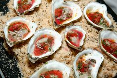We're looking forward to the Oyster Bash this year!