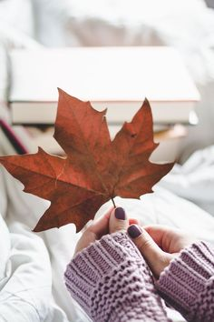 autumn perfect time, time to ask questions, self development, self help book - Top Trends Fall Pictures, Fall Photos, Autumn Cozy, Autumn Feeling, Fall Winter, Autumn Photography, Book Photography, Autumn Inspiration, Fall Halloween