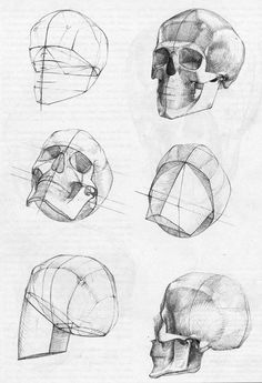 Learn To Draw People - The Female Body - Drawing On Demand Anatomy Sketches, Anatomy Drawing, Anatomy Art, Art Sketches, Head Anatomy, Art Drawings, Academic Drawing, Drawing Studies, Drawing Heads