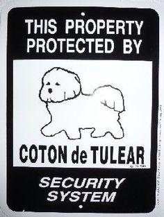 Coton de Tulear warning