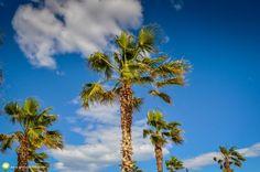Plaja şi faleza din Valencia Valencia, City Break, Clouds, Outdoor, Outdoors, Outdoor Games, The Great Outdoors, Cloud