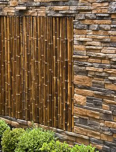 Bamboo is durable and resistant to insects and moisture. Timber bamboo can be grown successfully in the southern United States. The poles must be left on the plant for at least three years before they are harvested and stored vertically in the shade to dry.