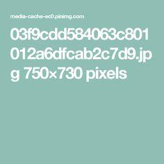 03f9cdd584063c801012a6dfcab2c7d9.jpg 750×730 pixels