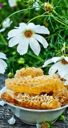 Infos und Tipps zur Honig Heilwirkung: Die Heilwirkung von Honig ist seit Jahrtausenden überliefert. In unserem Beitrag finden Sie die verschiedenen ...