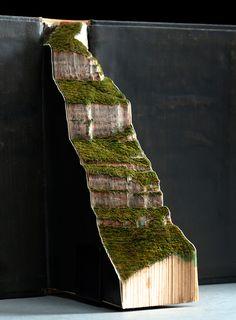 guy laramée carefully carves brazil's lush landscape into found books