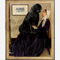 Newfie as lap dog