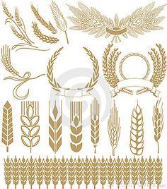 Wheat vector by Sash77, via Dreamstime