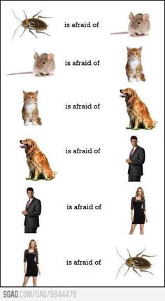 The circle of fear :)