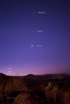 Accumulation of planets and Moon
