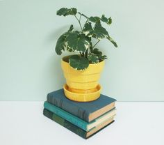 1950s McCoy Pottery Flower Pot in Yellow with Basketweave Pattern and Attached Saucer by Tparty on Etsy