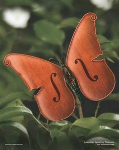 Music - it's in our nature