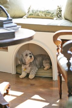 window bench with dog cubbie – I like this idea.