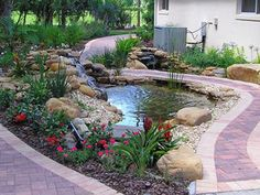 What is the difference between a Koi pond and a water gardens pond?