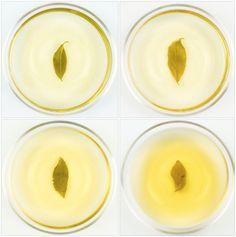 Luxurious Jade Oolong Experience - Sampler 4-Pack  #luxury #tea