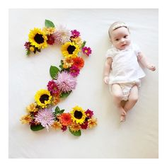 avanelle nile || two months old