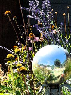 my_witchy_herbal_garden___by_ladyjar