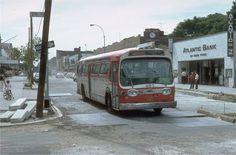 1981 Ditmars, Astoria Queens