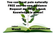 Knowledge Is Power, Herbs, Canning, Awesome, Health, Health Care, Scientia Potentia Est, Herb, Spice