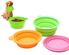 $4 for a Collapsible Silicone Pet Feeder, Choose from 6 Colours Pet Feeder, Colours, Tableware, Dinnerware, Dishes, Place Settings