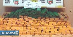 Polícia Reservada (P2) do 25° Batalhão apreende mais de 300 kg de maconha em Icaraíma