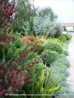 ✔ 56 fabulous xeriscape front yard design ideas and pictures 32 Design Cour, Australian Native Garden, Rogers Gardens, Drought Tolerant Landscape, Front Yard Design, Xeriscaping, Garden Shrubs, Dry Garden, Garden Landscape Design
