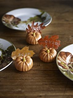 It's all in the details. Pick some leaves from the yard to attach to baby pumpkins for place cards! A last minute Thanksgiving tip.