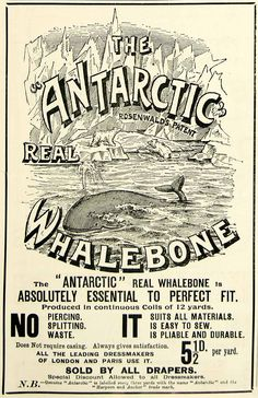 1895 Ad Antique Victorian Antarctic Whalebone Whale Dressmaking Fitting Fashion