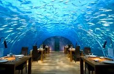 Ithaa Underwater Restaurant, Maledives