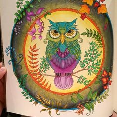 Mandala Owls Enchanted Forest Mandala De Corujas Floresta
