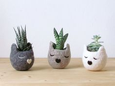 The Kitty Cat Planter Set