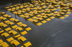 Fleet in the floods: Yellow cabs in a parking lot are surrounded by water after Superstorm Sandy struck Hoboken, New Jersey via dailymail #Photography #Hurricane_Sandy #Cabs
