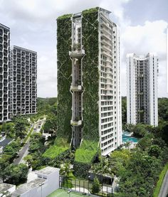 """altid clothing on Instagram: """"An altid favourite - a vertical forest. This one called the tree house can be found in Bukit Timah. In tropical Singapore, the plants act…"""" Modern Landscape Design, Landscape Architecture Design, Green Architecture, Modern Landscaping, Amazing Architecture, Sketch Architecture, Dp Architects, Vertical Forest, Architecture Magazines"""