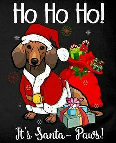 Dachshund Rescue, Dapple Dachshund, Dachshund Art, Dachshund Gifts, Daschund, Merry Christmas Dog, Christmas Animals, Vintage Christmas, Cute Dogs