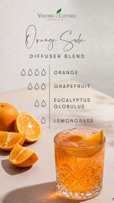 Young Essential Oils, Essential Oil Uses, Doterra Essential Oils, Yl Oils, Eucalyptus Globulus, Essential Oil Combinations, Diffuser Recipes, Essential Oil Diffuser Blends, Orange Soda