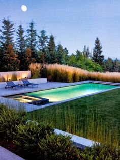 There is something quite appealing yet subtle in this pool and spa design. The Miscanthus right up to the pool edge has such a strong, softening presence in the landscape. Pinned to Pool Design by Darin Bradbury of BASK Design. Swimming Pool Landscaping, Swimming Pool Designs, Landscaping Ideas, Backyard Landscaping, Pool Spa, Amazing Swimming Pools, Modern Pools, Modern Pool And Spa, Beautiful Pools