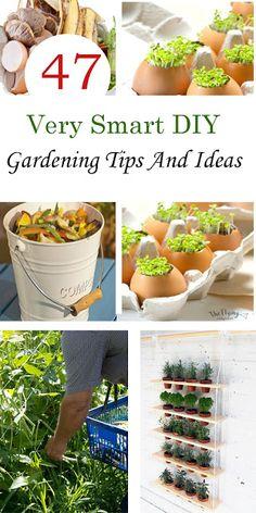 47 Very Smart DIY Gardening Tips And Ideas - Pinterest Gardening