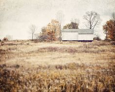 Barn Landscape Pictures Fall Autumn Country Farm Photography White Barn Beige Gold Brown Cream Tan Field - Shabby Chic Decorating.