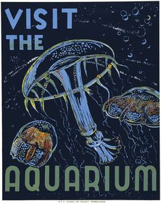 Visit the Aquarium