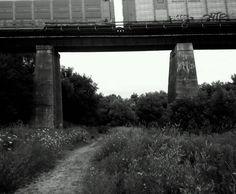 Bowmanville creek #10