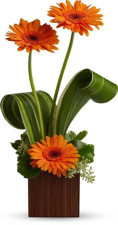 Teleflora's Bamboo Sunshine bouquet of Gerberas Basket Flower Arrangements, Wedding Flower Arrangements, Flower Centerpieces, Flower Decorations, Floral Arrangements, Wedding Centerpieces, Wedding Decorations, Deco Floral, Arte Floral
