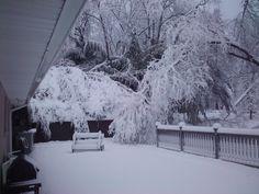 Snow Storm   Snow storm in Burtonsville, Maryland