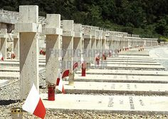 Monte Cassino Polish War Cemetery anniversary of the Second War Battle in the Allied Italian Campaign 1 Army History, Poland History, Italian Campaign, Native Country, History Education, Graveyards, White Crosses, 60th Anniversary, Historical Images