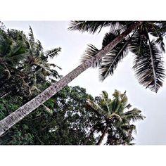 Kerala 🙏