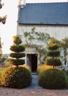 At the chapel of a château on the Loire, yew topiaries frame the entrance. Photographed by François Halard, Vogue, February 2006.