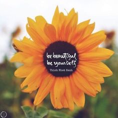 Be beautiful be yourself - Thich Nhat Hanh. Leaf Quotes, Buddhist Quotes, Thich Nhat Hanh, Leaves, Calligraphy, Beautiful, Instagram, Calligraphy Art, Buddha Quote