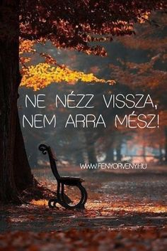 Ne nézz vissza... - Fényörvény.hu Meant To Be Quotes, Motivational Quotes, Inspirational Quotes, Quotes About Everything, Color Meanings, Daily Motivation, Nonfiction Books, Funny Photos, Quotations