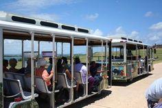 Trolley in Old San Juan , P.R. #puertorico #travel