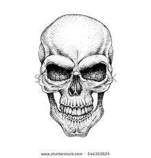 """Résultat de recherche d'images pour """"dotwork skull"""""""